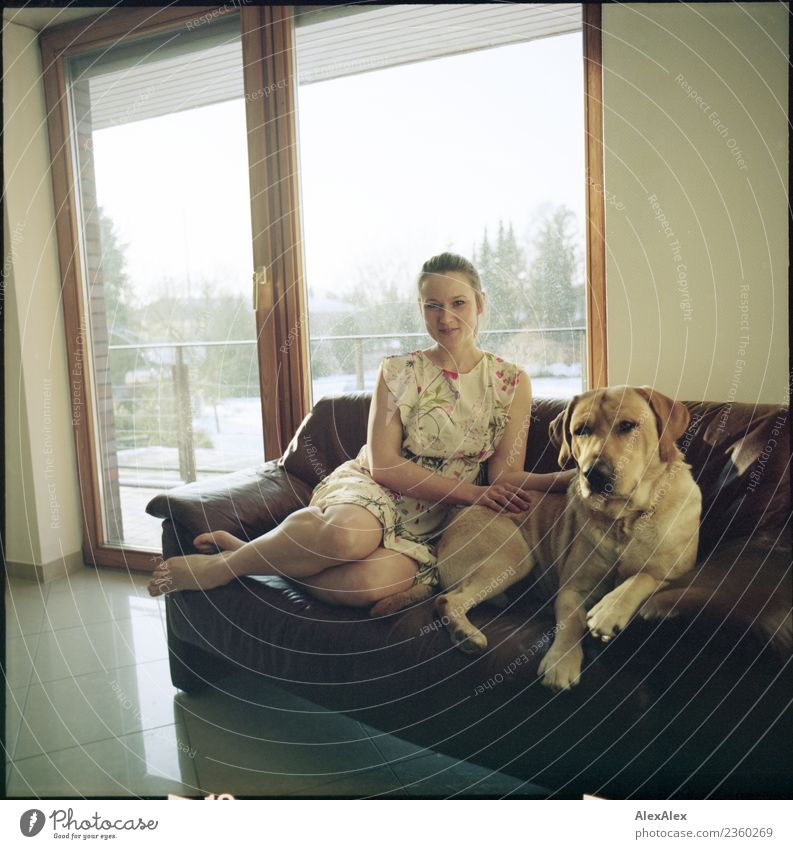 Young woman sitting barefoot on a brown leather couch with a blond Labrador - analogue medium format with picture frame already Harmonious Sofa balcony window