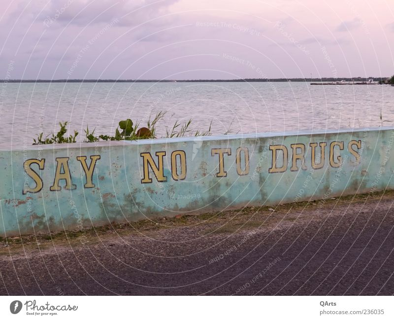 SAY NO TO DRUGS Intoxicant Alcoholic drinks Ocean Caribbean Belize Central America Signage Warning sign Graffiti Smoking Illness Protection Cannabis Heroin LSD