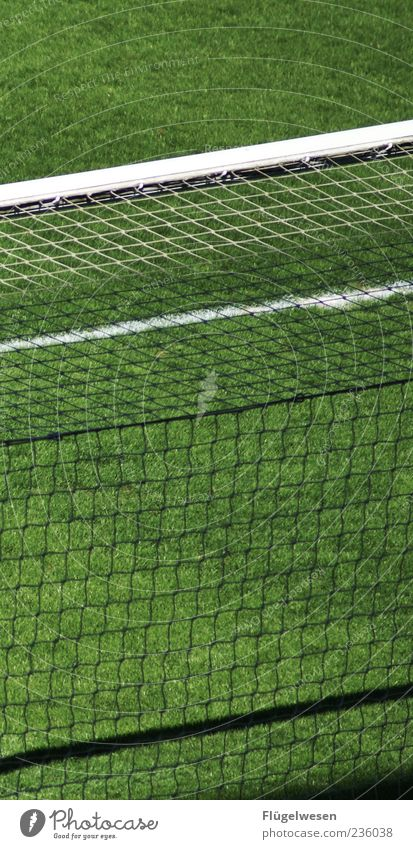 Green Meadow Sports Grass Soccer Lawn Net Goal Football pitch Ball sports Sporting Complex Artificial lawn Penalty kick Football stadium Goalpost corner