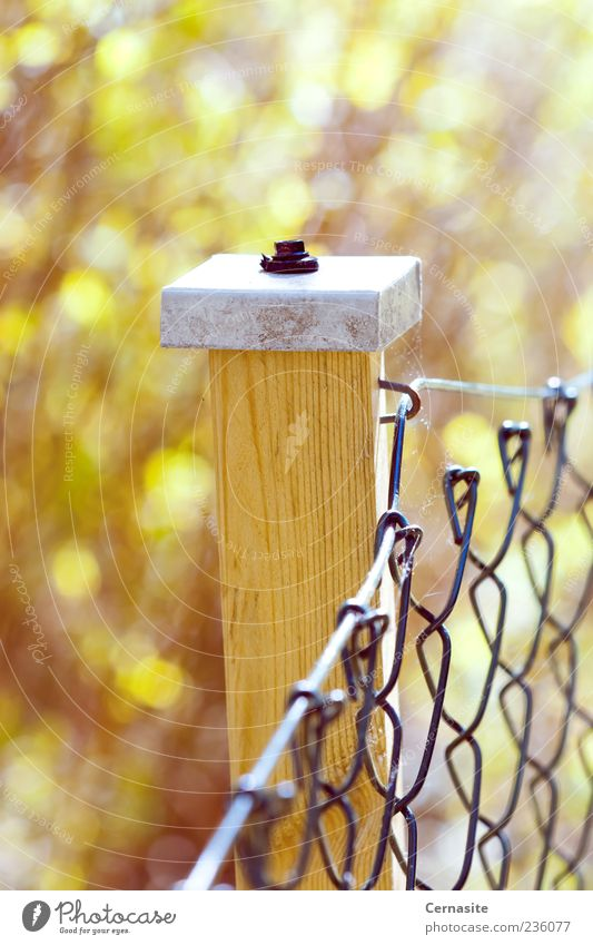 Holding the Sunlight Manmade structures Esthetic Simple Curiosity Brown Yellow Emotions Moody Fence Blur White Wood Metal Colour photo Subdued colour