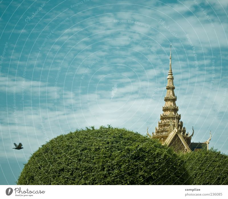 OAo Vacation & Travel Sightseeing Air Sky Clouds Tree Capital city Architecture Roof Tourist Attraction Landmark Bird Blue Gold phnom phen Cambodia