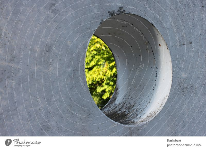 green. hole. Manmade structures Building Architecture Wall (barrier) Wall (building) Facade Concrete Hollow Summer vacation time Colour photo Exterior shot