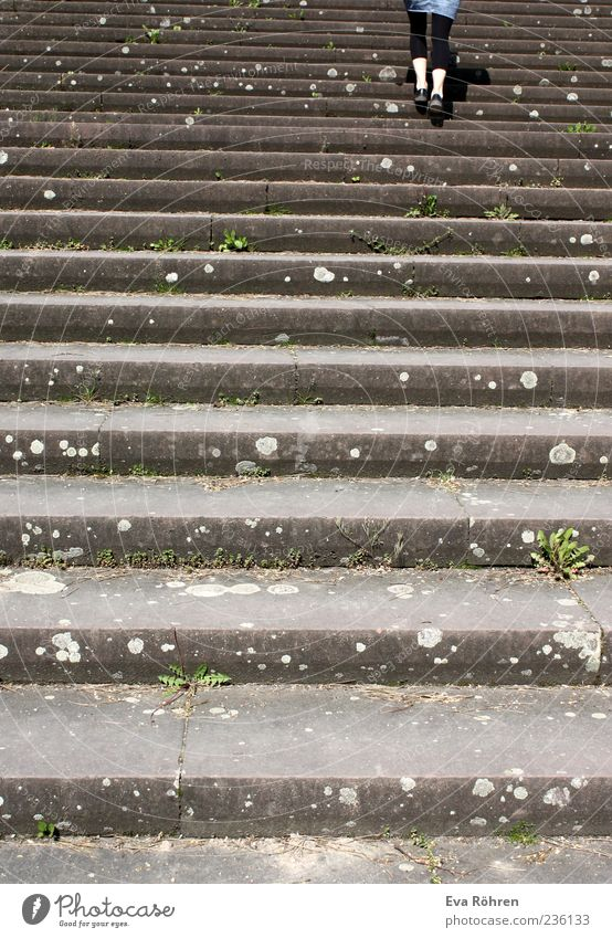 Human being Above Gray Movement Legs Going Stairs Concrete Skirt Effort Pedestrian Endurance Leggings