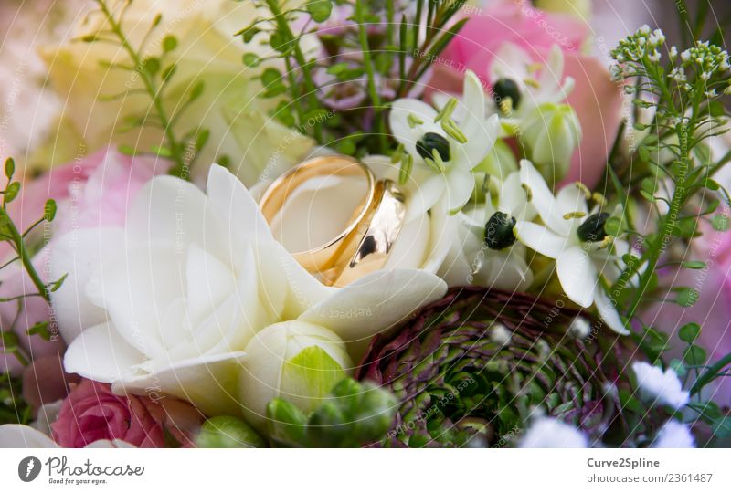Flower Love Emotions Together Eternity Gold Sign Wedding Attachment Bouquet Trust Lovers Infatuation Ring Loyalty Connectedness