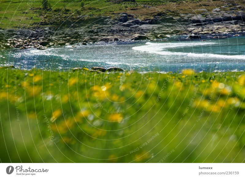 Nature Blue Water Green Ocean Summer Landscape Grass Coast Waves Natural Europe Bay Norway Scandinavia