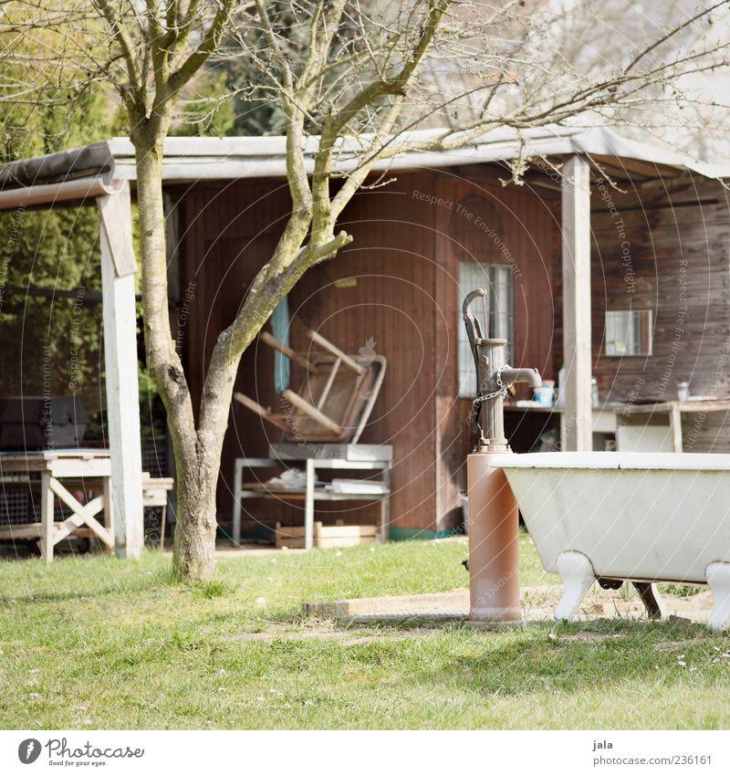 Nature Tree Plant Grass Garden Building Well Bathtub Hut House (Residential Structure) Gardenhouse Environment