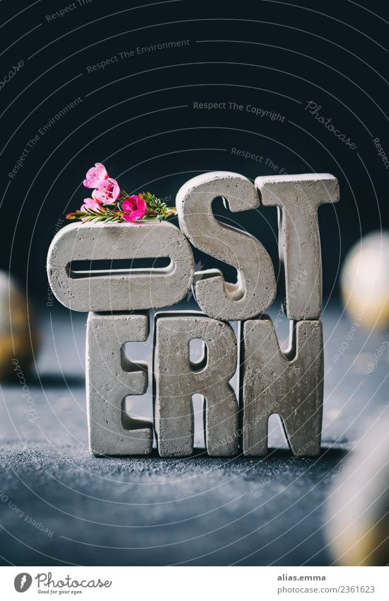 OSTERN - Easter card from concrete letters Easter wish Easter gift Easter egg Concrete Creativity Letters (alphabet) Flower Contrast Converse Rustic Gray Stack