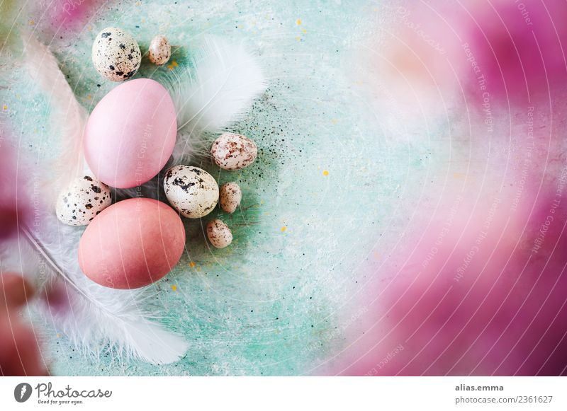 Kunterbunte Easter greetings Easter egg Multicoloured Pink Turquoise Egg Colour Blur April Spring Fresh Copy Space Card