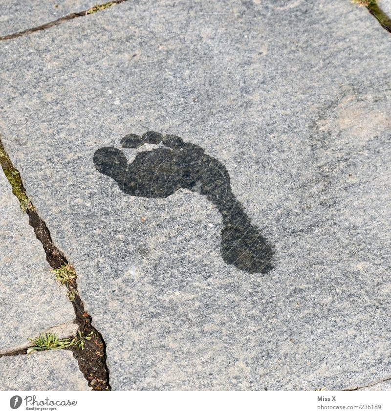 barefoot Feet Wet Barefoot Tracks Footprint Imprint Toes Water Stone slab Colour photo Subdued colour Exterior shot Deserted Copy Space left Copy Space right
