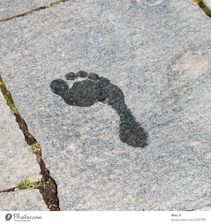 Water Stone Feet Wet Tracks Footprint Seam Barefoot Toes Imprint Stone slab Stone floor
