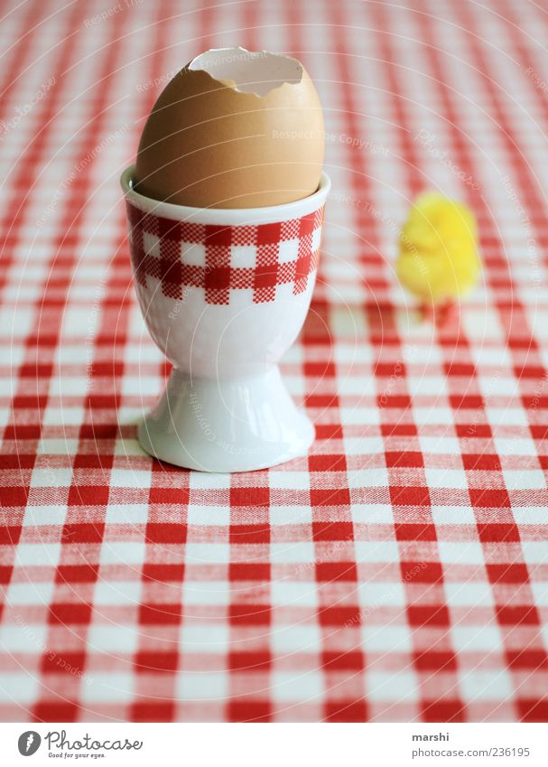 chicken run Food Nutrition Breakfast Crockery Red White Barn fowl Symbols and metaphors Checkered Egg cup Eggshell Fresh Chick Bird Colour photo Tablecloth