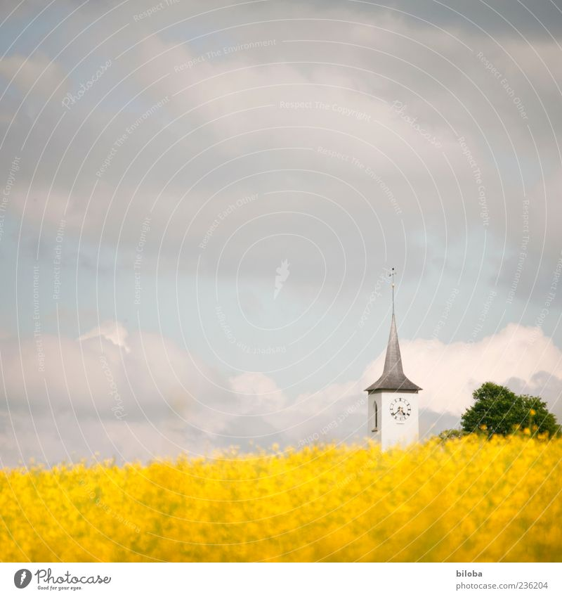 regional church Sky Clouds Summer Agricultural crop Hill Church Manmade structures Building Architecture Yellow Gray White Calm Belief Religion and faith Hope