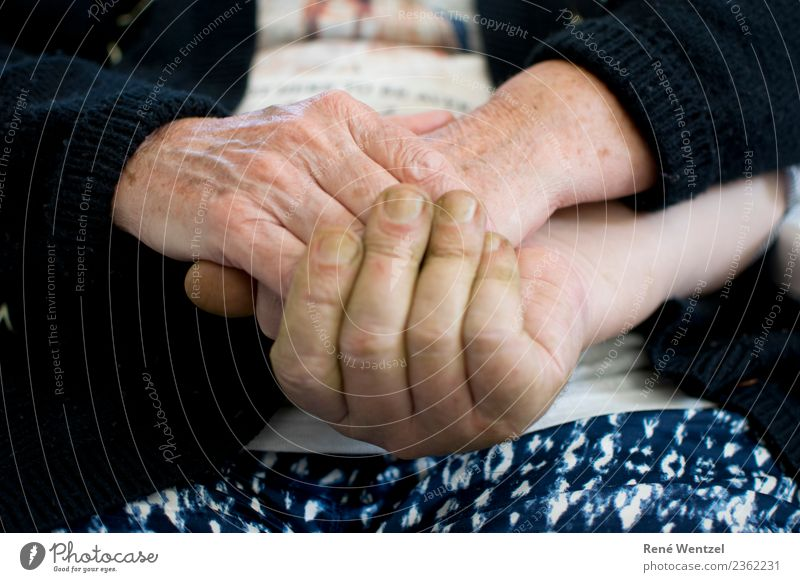 Familiar Hands Human being Masculine Feminine Woman Adults Man Female senior Male senior Parents Mother Father Senior citizen Life Skin Fingers 2