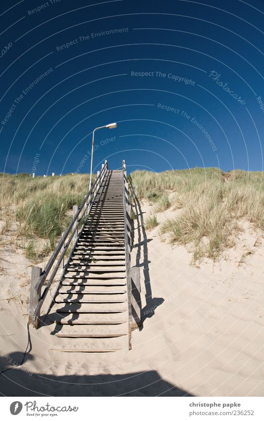 Stairway to heaven Vacation & Travel Tourism Summer Beach Sand Cloudless sky Beautiful weather Coast Stairs Wood Beginning Go up Beach dune Marram grass