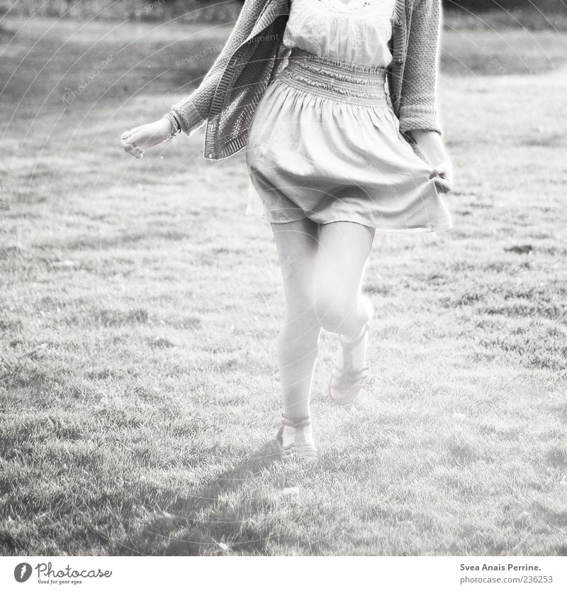 The grey of our time. Elegant Feminine Young woman Youth (Young adults) 1 Human being 18 - 30 years Adults Meadow Fashion Skirt Dress Movement Walking Running