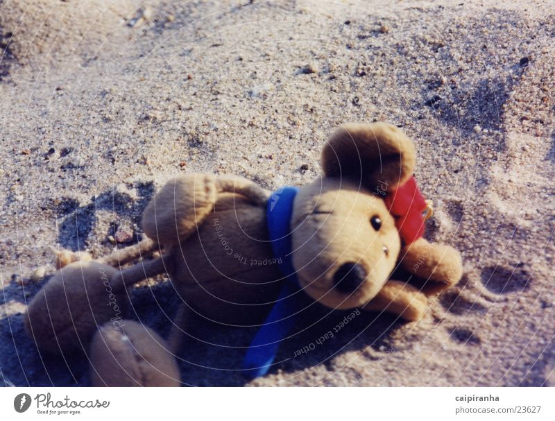Beach Relaxation Sleep Cute Mouse Cuddly toy