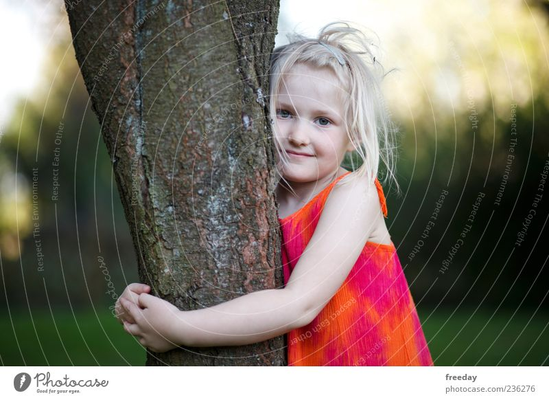 Human being Child Nature Beautiful Tree Girl Life Blonde Infancy Arm Smiling Dress Tree trunk Environmental protection Embrace 3 - 8 years