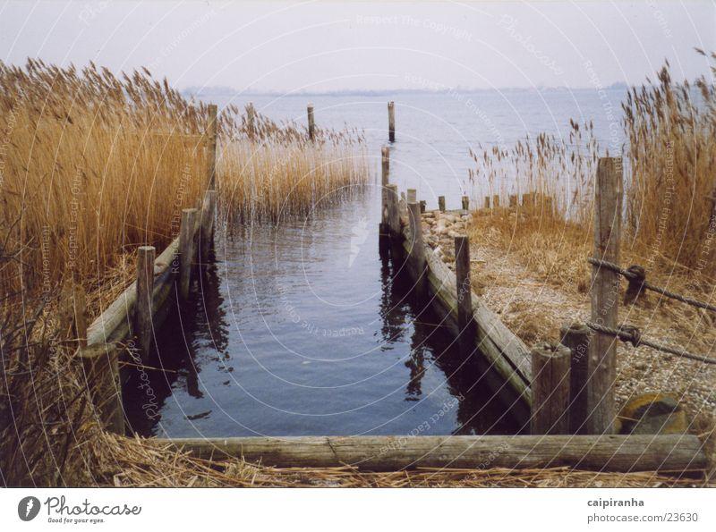 footbridge Footbridge Graffiti Water Pteridopsida Pole Sand