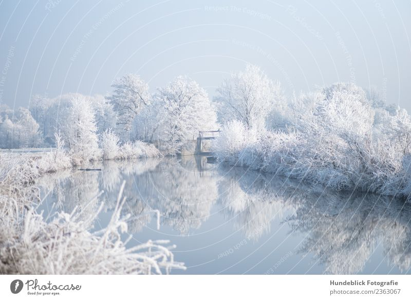Sky Nature Water Landscape White Tree Relaxation Calm Winter Cold Snow Contentment Bright Ice Fresh Idyll