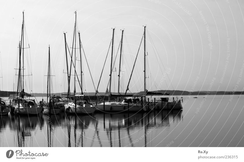 at the port Vacation & Travel Ocean Nature Landscape Water Summer Coast Baltic Sea Black & white photo Exterior shot Twilight Light Shadow Sailboat Harbour