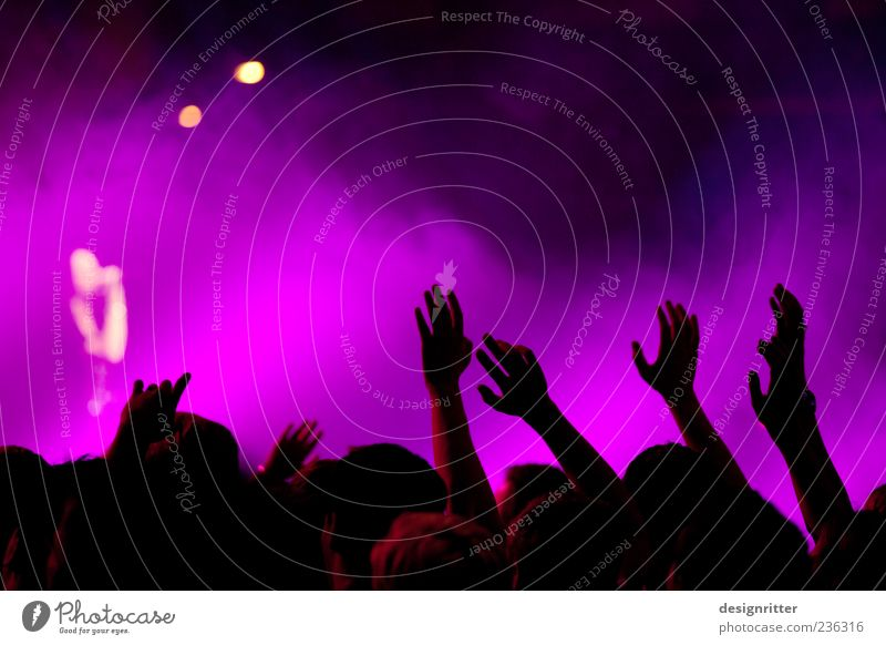 Human being Hand Party Music Feasts & Celebrations Dance Arm Violet Concert Event Crowd of people Stage Audience Enthusiasm Fan Musician