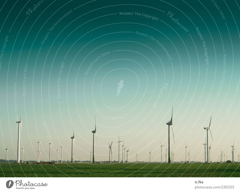 Sky Blue Green Landscape Meadow Spring Wind Field Climate Large Beautiful weather Renewable energy Wind energy plant Rotate Environmental protection Pinwheel
