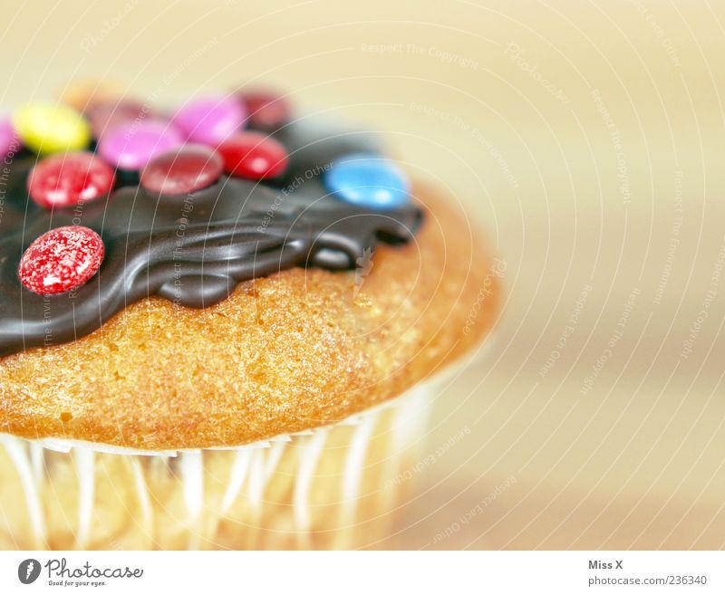 muffin Food Cake Dessert Candy Chocolate Nutrition Delicious Sweet Multicoloured Appetite Muffin Chocolate buttons Colour photo Close-up Copy Space right