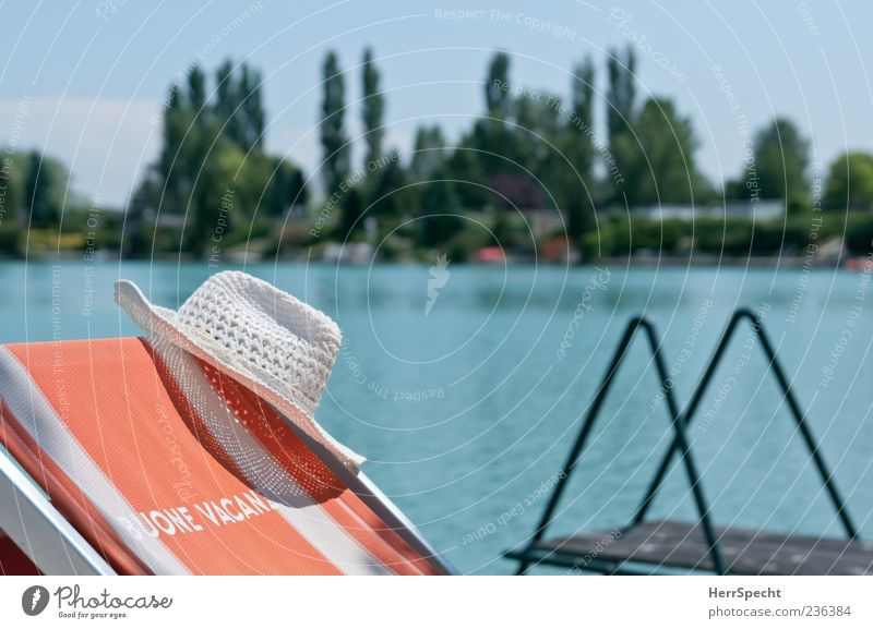 Buone Vacanze Vacation & Travel Tourism Summer Summer vacation Sunbathing Beach Landscape Water Cloudless sky Beautiful weather Tree Lakeside Pond