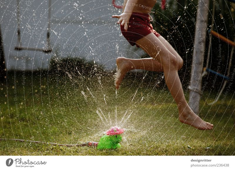 Child Water Summer Joy Playing Boy (child) Grass Jump Garden Legs Feet Infancy Wild Wet Drops of water Happiness