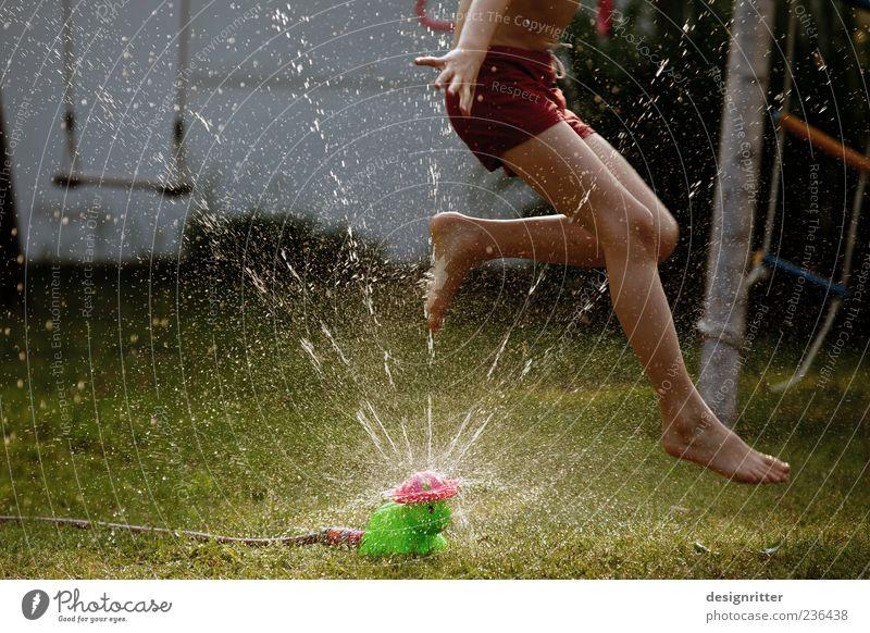 Child Water Summer Joy Playing Boy (child) Grass Jump Garden Legs Feet Infancy Wild Wet Drops of water Happiness