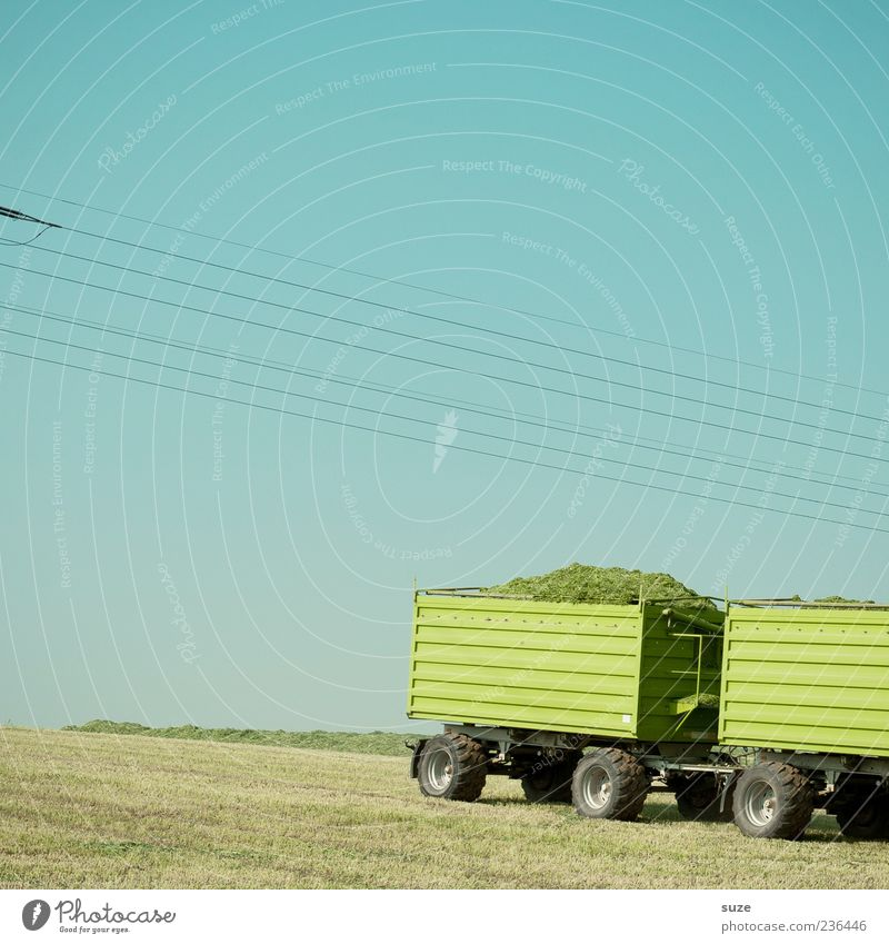 Maundy Thursday Summer Agriculture Forestry Environment Nature Sky Cloudless sky Beautiful weather Grass Meadow Field Vehicle Trailer Authentic Simple Natural