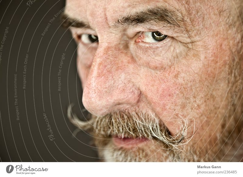 Old man Human being Masculine Man Adults Male senior Senior citizen Head 1 60 years and older Looking Natural Wisdom Colour photo Interior shot Studio shot
