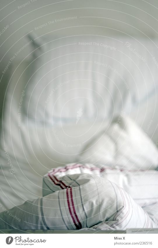 White Empty Bed Wrinkles Duvet Second-hand Morning Furniture Cushion Pillow