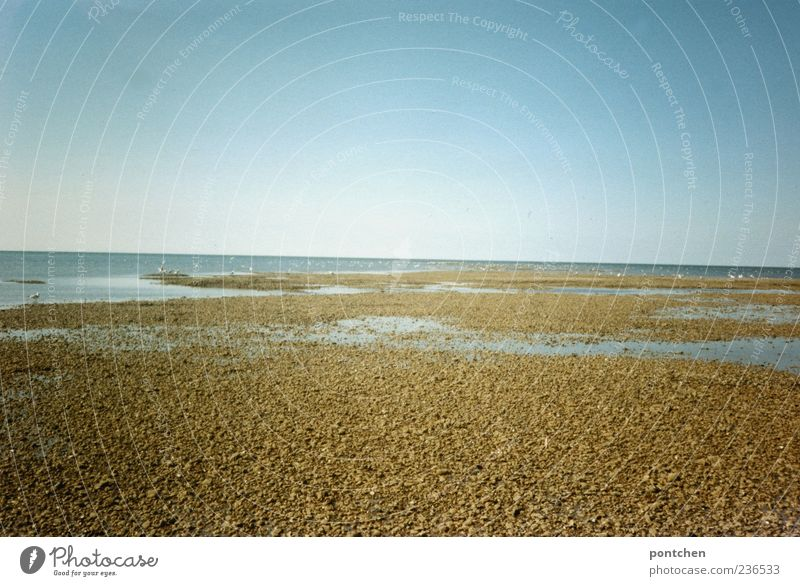Sky Nature Blue Water Vacation & Travel Ocean Summer Far-off places Sand Travel photography Beautiful weather North Sea Pebble Stone