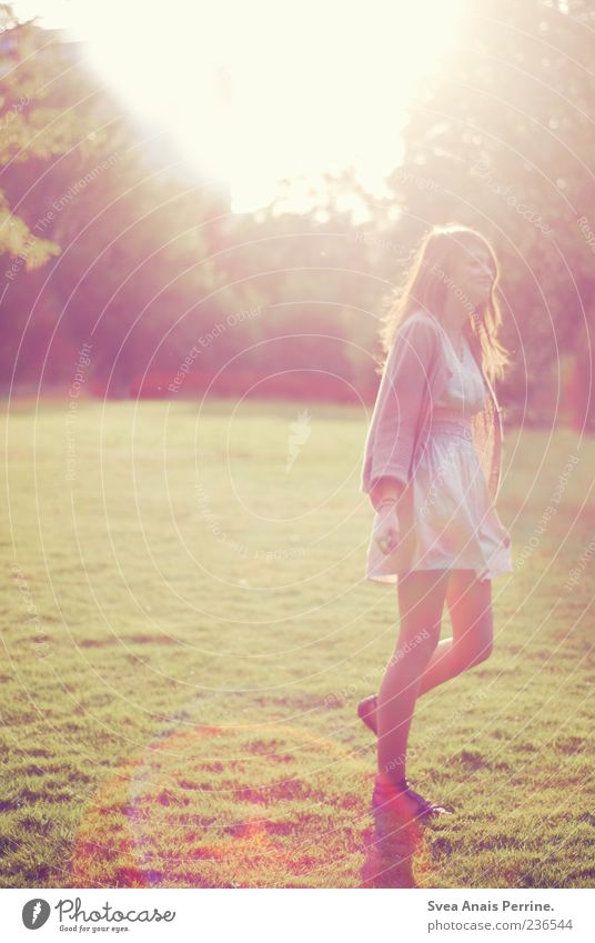 Nature Youth (Young adults) Beautiful Summer Adults Meadow Feminine Movement Happy Style Dream Park Contentment Going Elegant Happiness