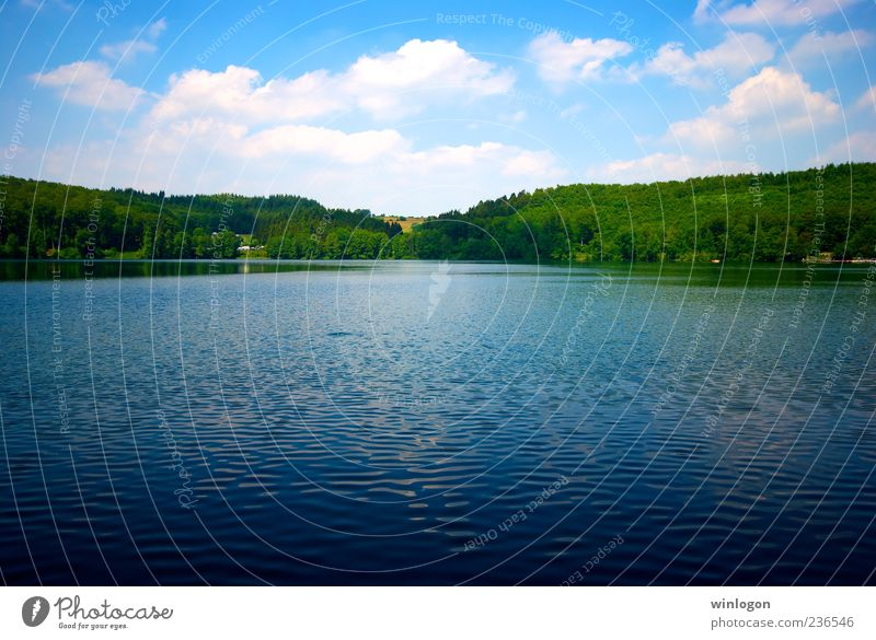 * Sky Nature Water Summer Vacation & Travel Far-off places Forest Freedom Environment Landscape Lake Germany Drinking water Idyll Beautiful weather Summer vacation