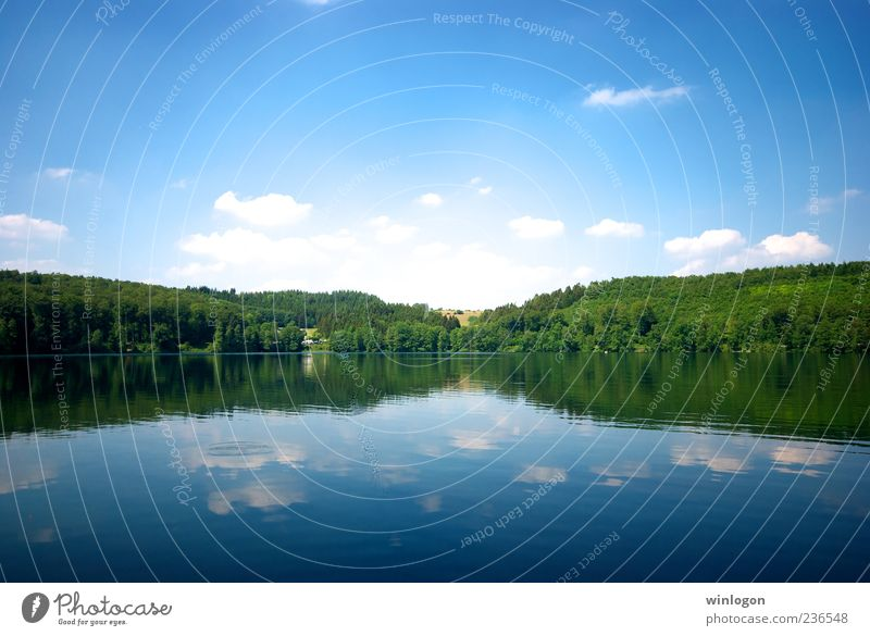 ** Sky Nature Water Summer Vacation & Travel Far-off places Forest Freedom Environment Landscape Lake Germany Drinking water Idyll Beautiful weather