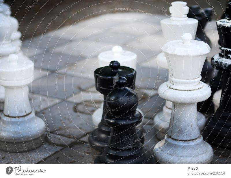 outdoor chess Leisure and hobbies Playing Concentrate Planning Chess Chess piece Chessboard Figure Colour photo Subdued colour Exterior shot Close-up Deserted