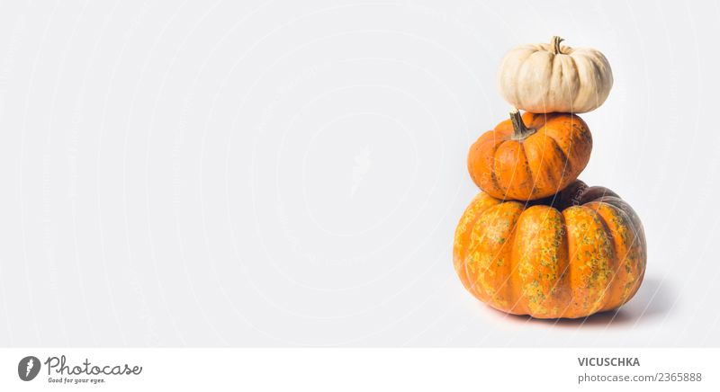 Pumpkin stack on white Food Vegetable Shopping Style Healthy Eating Feasts & Celebrations Thanksgiving Hallowe'en Nature Autumn Yellow Design Background picture
