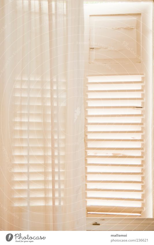 Window Bright Room Flat (apartment) Safety Protection Living or residing Delicate Mysterious Border Drape Transparent Safety (feeling of) Curtain Half