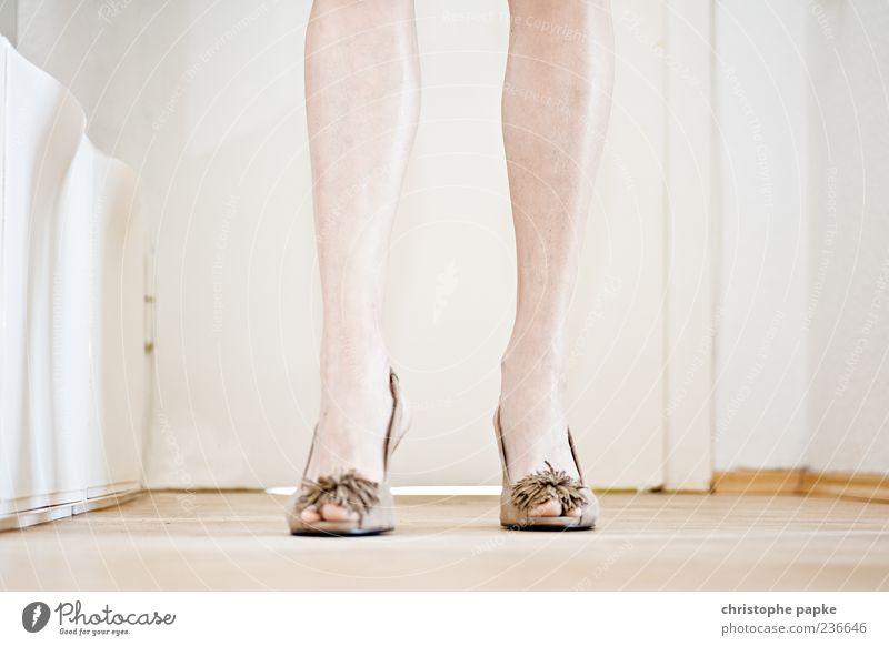 Beautiful Feminine Style Legs Fashion Feet Brown Going Footwear Elegant Stand High heels Lower leg Human being