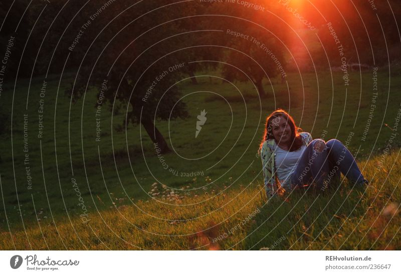 sun momentative Human being Feminine Young woman Youth (Young adults) 1 18 - 30 years Adults Emotions Moody Lie Meadow Grass Sit Tree Nature Landscape Smiling