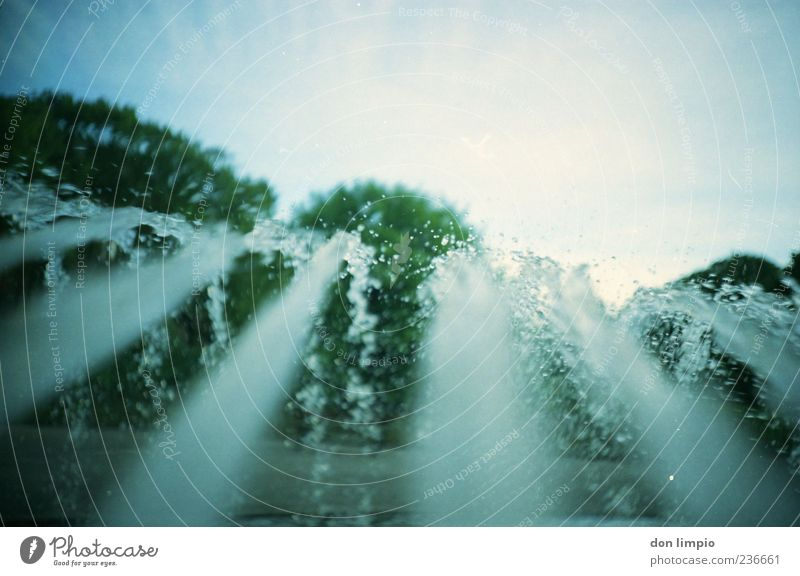 ...and it was summer Water Drops of water Summer Beautiful weather Tree Fountain Jet of water Analog Colour photo Lomography Deserted Copy Space top Day