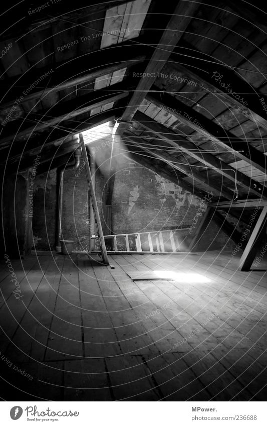 Attic II Stairs Roof Stone Concrete Wood Moody Calm Ladder Light Roof beams Clothesline Dust Tall Go up Attic story Illuminate Pearly Gates Floorboards Bucket