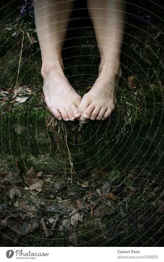 Nature Plant Leaf Loneliness Dark Grass Stone Legs Feet Sit Wild Dirty Stairs In pairs Bushes Uniqueness