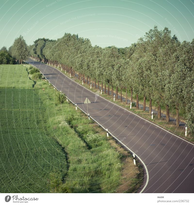highway Summer Environment Nature Landscape Sky Climate Beautiful weather Tree Meadow Field Transport Traffic infrastructure Road traffic Street Lanes & trails