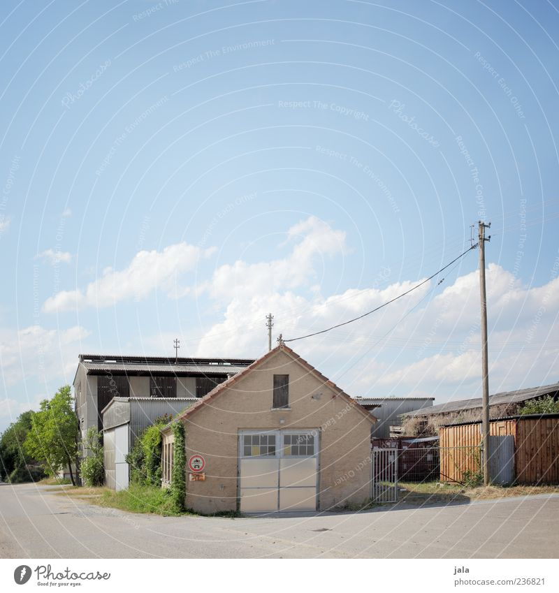 Sky Tree Plant House (Residential Structure) Architecture Building Bright Bushes Gloomy Manmade structures Village Electricity pylon Blue sky Courtyard Town