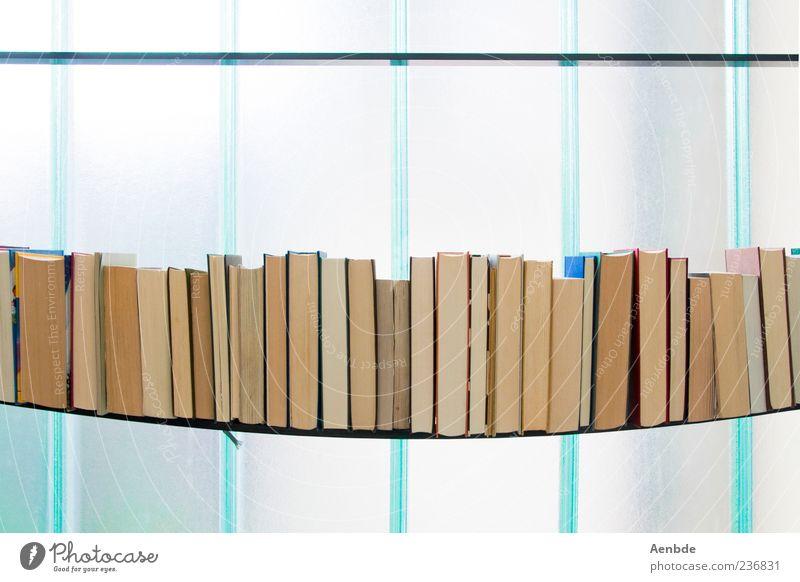 flexed... Media Book Esthetic Shelves Bookshelf Blue Window Heavy Bend Overburden Graphic Cold Colour photo Multicoloured Interior shot Deserted Day High-key