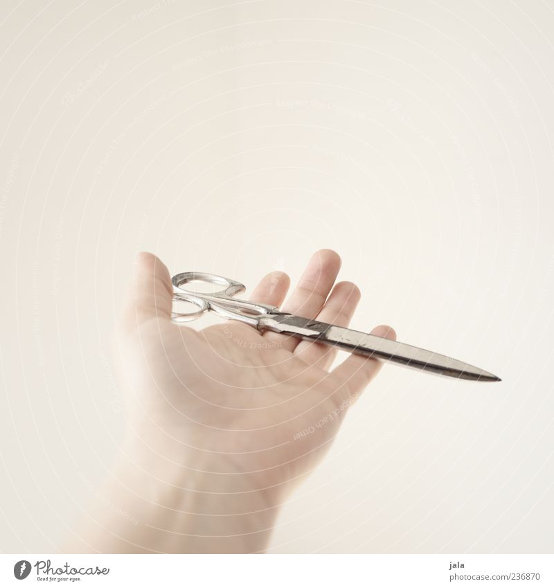 scissors Hand Fingers Scissors Carrying Retentive Indicate Give Colour photo Subdued colour Copy Space top Neutral Background White Bright