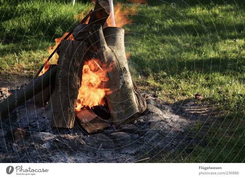 campfire Leisure and hobbies Event Hot Power Fire Wood Funeral pyre Fireplace Summer Firewood Flame Burn Ignite Colour photo Exterior shot Evening